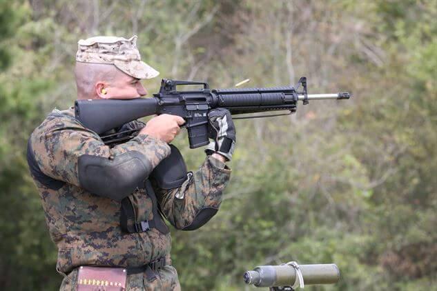 Rifle Scope vs Rifle Sight