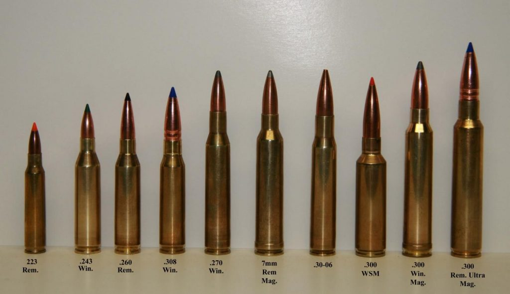 308 compared to 223 and 30.06
