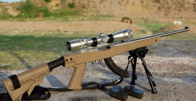 Best Scopes for 22LR: For Squirrel Hunting & Competing [2021]
